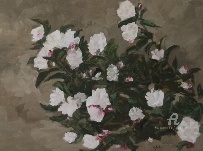 Chéker - Les Camélias Sasanqua blanc-rosé du jardin