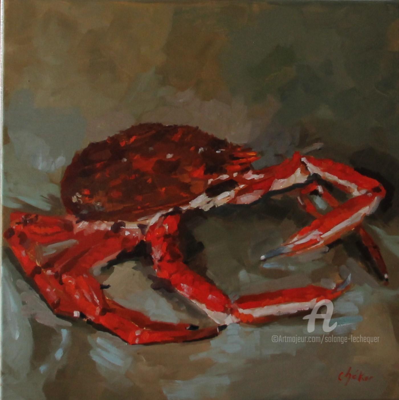 Chéker - L'Araignée de Mer