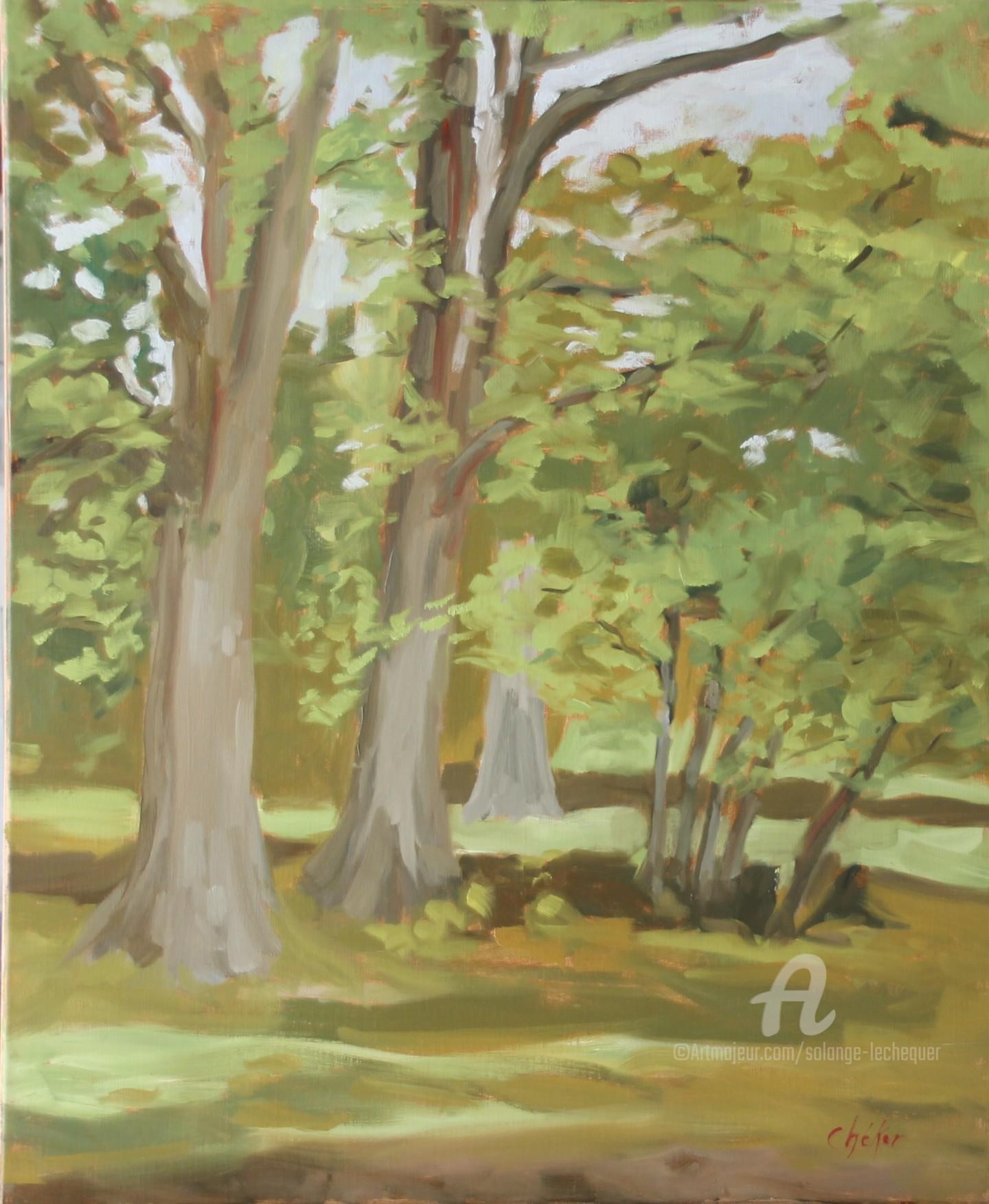 Chéker - En Sologne, Bosquet d'arbres au Glandier 2