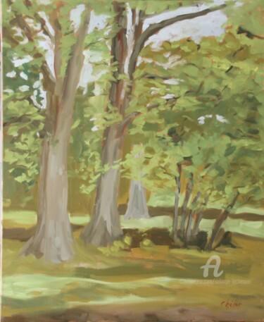En Sologne, Bosquet d'arbres au Glandier 2