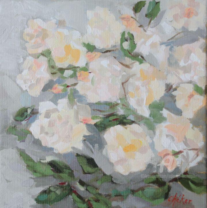 CHéKER - Les Roses abricot Ghislaine de Féligonde